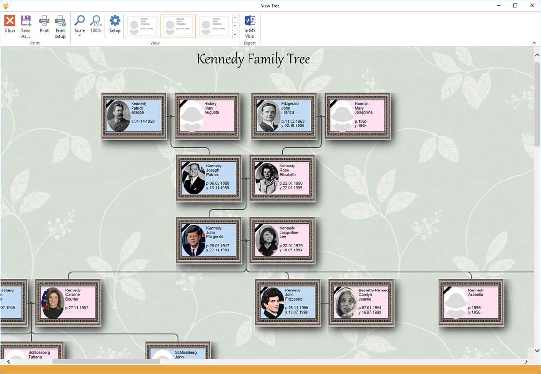 Generations Tree   Programmmöglichkeiten